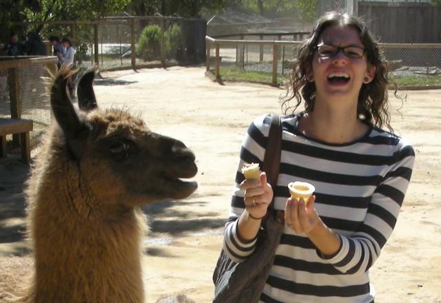 me with llama upclose