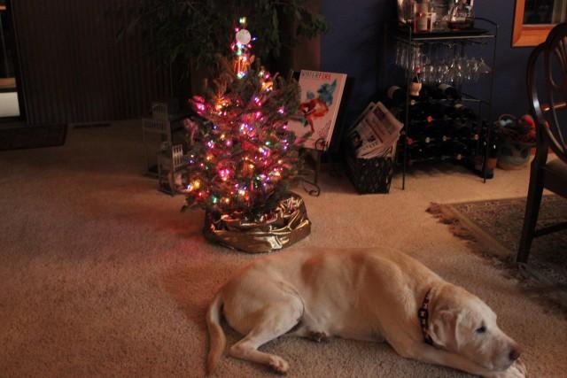 wife blog travel blog chelsea avery little christmas tree