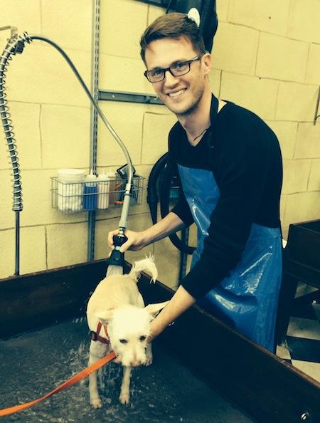 Ryan-Avery-washing-a-dog