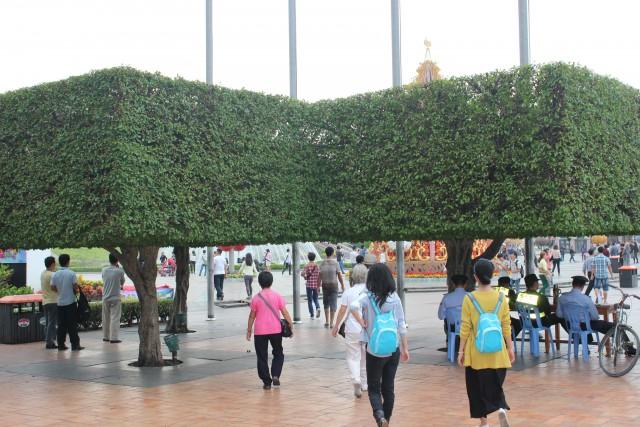 shenzhen world park