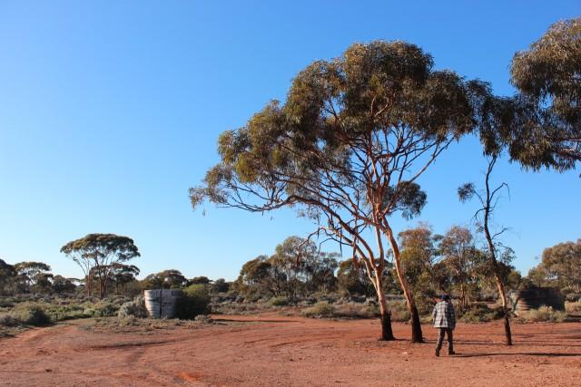 IMG_3905 kalgoorlie australia outback