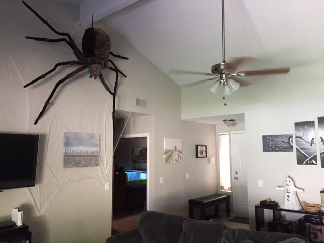 girls weekend spider