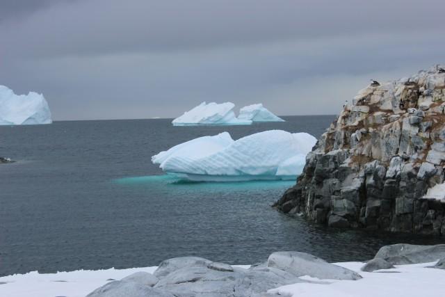 IMG_7557 iceberg bright blue