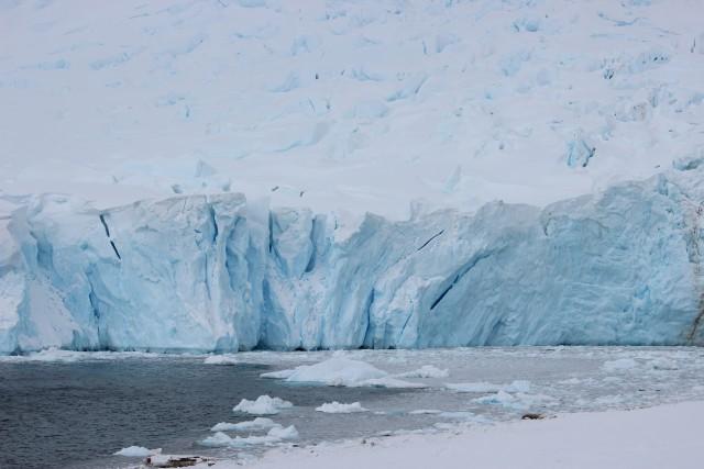 IMG_8205 iceberg
