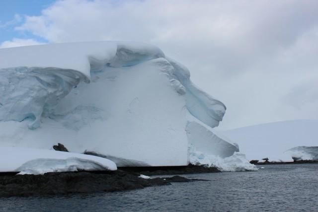 IMG_8371 lion iceberg