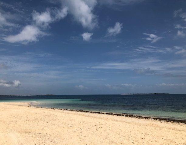bongoyo island tanzania